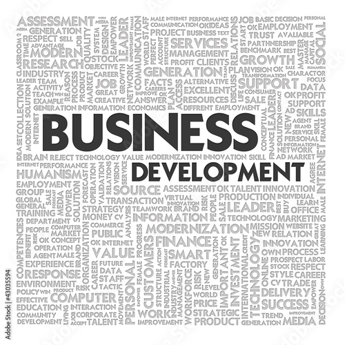 Word cloud business concept