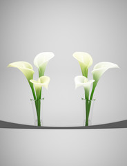White Calla 2 small vases