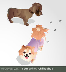 eps Vector image:Footprint DogⅡ