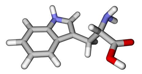 Essential amino acid tryptophan 3D molecular structure