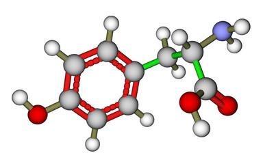 Amino acid tyrosine molecular structure