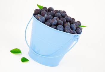 fresh blueberry in a blue mug with leaves