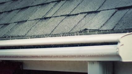 Rainy Day Roof