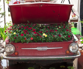 flower garden in the car