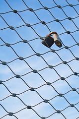 lucchetti incrociati su rete metallica