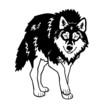 wolf black white isolated on white background