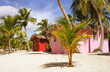 Caribbean beautiful Beach house with coconuts trees