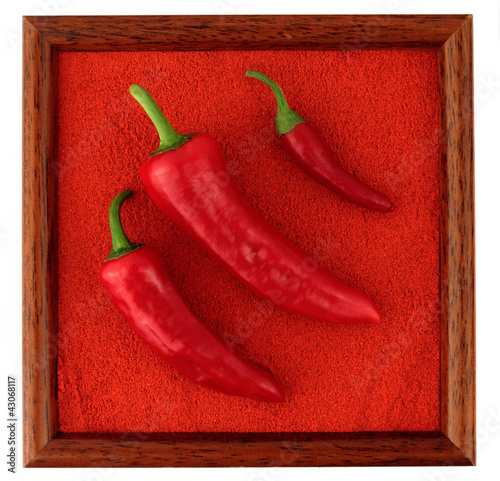 Chili pepper pod on paprika powder, full frame