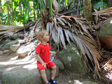 baby tourist in Vallee de Mai
