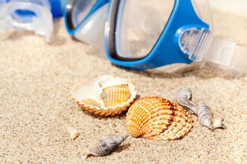 macro spiaggia