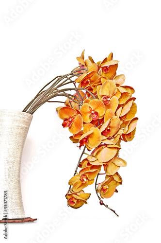 Bouquet d'orchidées phalaenopsis oranges