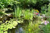 Garten Teich Seerosen Buddha