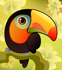 Toucan on the  branch