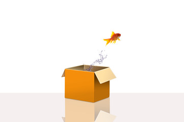 Gold fish flying out side the box for concept idea