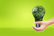 hand holding Bulb with tree inside isolated on green white backg