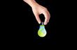 hand holding Bulb with earth inside, green eco concept