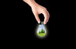 hand holding Bulb for green eco concept