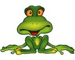 Green Frog - Colored Cartoon Illustration