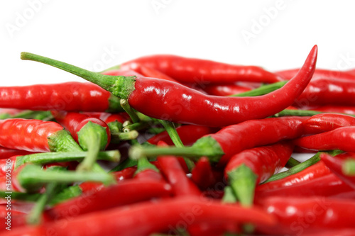 Red chili isolated on white