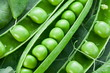 Pods of green peas on a background of leaves.