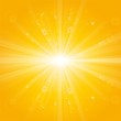 shiny sun beams, natural summer background