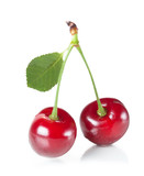 cherries couple isolated on white