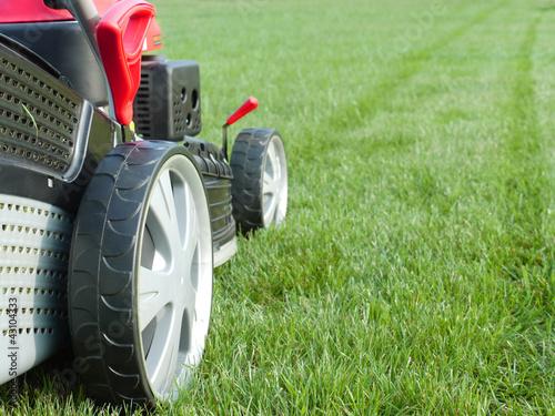 Grassmower