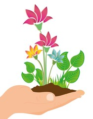 ecological illustration