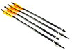Arrows with Broadhead and Practice Points - 43112531