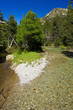 river in national park Aiguestortes i estany de Sant Maurici