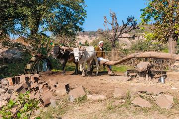 Bewässerungsanlage im ländlichen Rajasthan, Indien