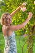 Junge Frau beim Schneiden von Rosen im Garten