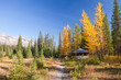 Sunny day of autumn in Kootenay National Park, British Columbia,