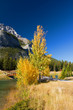 Autumn in Banff National Park, Alberta, Canada