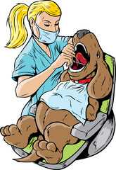 Veterinarian dentist