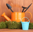 Green moss and watering can with gardening tools