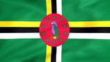 Developing the flag of Dominica
