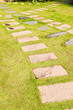Stone walkway on green grass in garden