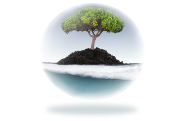 bioesfera