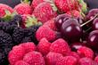 raspberries, mulberry, strawberry and cherry