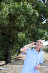Elderly person with phone in front of tree