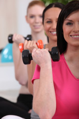 Women lifting dumbbells at the gym