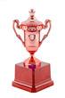 Bronze Trophy