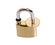 Padlock with coin as a symbol of financial protection