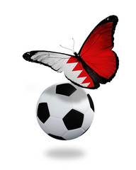 Concept - butterfly with Bahraini flag flying near the ball, lik