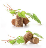 Wine cork with grape illustration and green leaves, on white