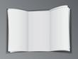 Stock of blank brochure