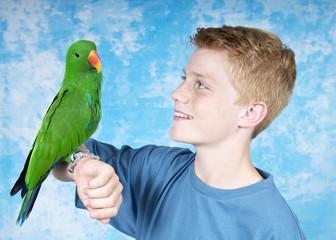 Papagei auf der Hand