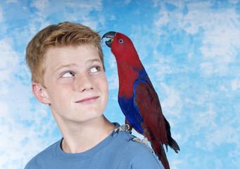 Papagei sitzt auf Schulter