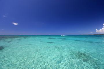 透明なサンゴの海と夏空